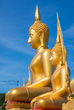 Golden buddha on blue sky Stock Image