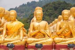 Golden buddha at Buddha Memorial park Royalty Free Stock Image