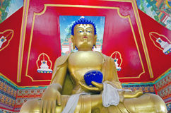 Golden Buddha in buddhist temple, India Royalty Free Stock Images