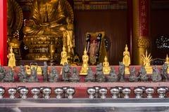 The Golden Buddha Chinese style at Wat Borom Raja Kanjanapisek W Royalty Free Stock Image
