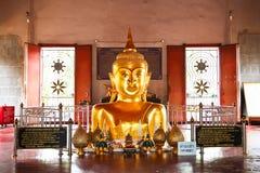 Golden Buddha emerging from ground in Phuket Stock Image