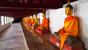 Golden buddha. In Grand temple Nakhon Si Thammarat Stock Images