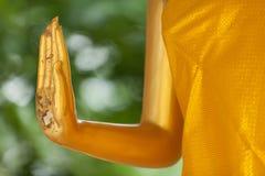 Golden buddha hand Royalty Free Stock Image