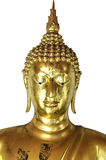 Golden buddha head isolated on white background Stock Image