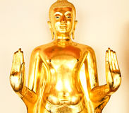 Golden Buddha image in wat pho temple Stock Image