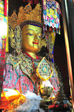 Golden Buddha images. Clay sculptured image of buddha with gold in Gandan Monastery of Gelug Sect, Tibetan buddhism, lhasa Royalty Free Stock Photography