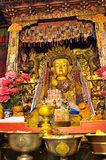 Golden Buddha images. Clay sculptured image of buddha with gold in Gandan Monastery of Gelug Sect, Tibetan buddhism, lhasa Royalty Free Stock Photos
