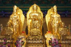 The golden buddha and kuan. Stock Photography