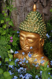 Golden buddha. A golden painted head of a buddha amongst flowers in a garden royalty free stock photo