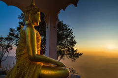 Golden Buddha in a pine forest at dawn. Stock Photo