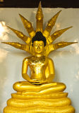 A golden Buddha sitting Stock Images