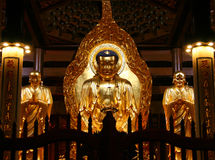 Golden Buddha in South Putuo Temple in Xiamen Stock Photo