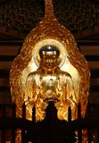Golden Buddha in South Putuo Temple in Xiamen Stock Photography