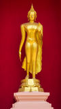 Golden Buddha stands Stock Images