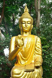 Golden buddha statue. In the forest at Thailand Stock Images