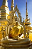 Golden buddha statue. In watprabarommathat thailand Royalty Free Stock Images