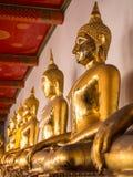 Golden buddha statue around area of main church in Wat Pho Stock Image