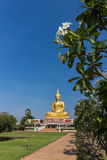 golden buddha statue Royalty Free Stock Images