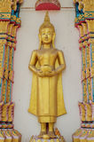 Golden buddha statue. In calm Royalty Free Stock Photography