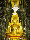 Golden Buddha statue at Cathedral glass Stock Photos