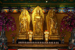 Golden buddha statue in Chinese temple in Thailand Royalty Free Stock Photo