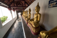 Golden Buddha statue. In the cloister Royalty Free Stock Image