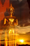 Golden Buddha statue in the glass room Stock Images