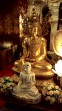 Golden Buddha Statue. I take this photo from Wigan Watphadarapirom temple in Maerim city royalty free stock photography