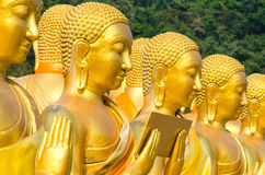 Golden Buddha statue. Golden Buddha at Magha Puja Buddhist Memorial park, Thailand Stock Photos
