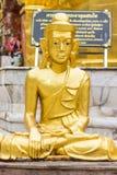 Golden Buddha statue Shan style Stock Photos