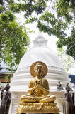 GOLDEN BUDDHA STATUE IN SIR LANKA TEMPLE Stock Images