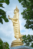 Golden Buddha statue standing,Thailand Stock Photography