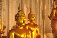 Golden Buddha Statue. In the temple Stock Images