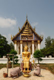 Golden buddha statue. With temple background Royalty Free Stock Photos