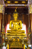 Golden buddha statue at Temple in Chiang Mai Stock Image