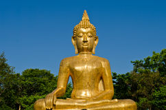 Golden Buddha statue at temple of Thailand. With blue sky background Royalty Free Stock Image