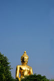 Golden Buddha Statue. The golden buddha at Golden Triangle Park , Sob Ruak , Chiang Rai Province , Thailand stock images