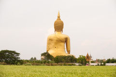 Golden Buddha statue at Wat Muang Stock Image
