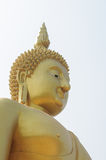 Golden buddha statue. With white background Royalty Free Stock Photos
