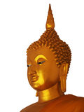 Golden buddha statue  on white background Royalty Free Stock Images