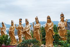 Statues at Ten Thousand Buddhas royalty free stock photos