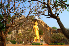 Golden Buddha statues carved into the cliffs Stock Photography