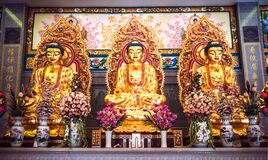 Golden buddha statues in chinese temple Royalty Free Stock Photography