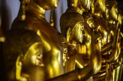 Golden buddha statues in temple in Thailand royalty free stock photography