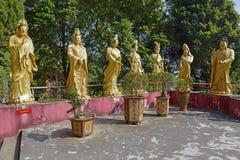 Golden Buddha statues at Ten Thousand Buddhas Monastery, Hong Kong royalty free stock image