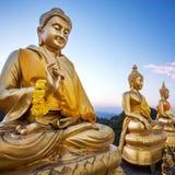 Golden Buddha statues Royalty Free Stock Photo