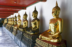 Golden Buddha statues in Wat Pho. Bangkok, Thailand royalty free stock photo