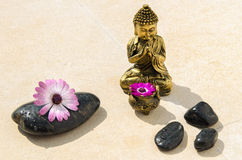 Golden Buddha and Stones. Spa Concept with golden Buddha, black pebbles and flowers on a stone ground Stock Photos