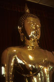 Golden Buddha, in temple Royalty Free Stock Image