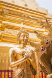 Golden Buddha in Temple Chiang Mai Royalty Free Stock Image